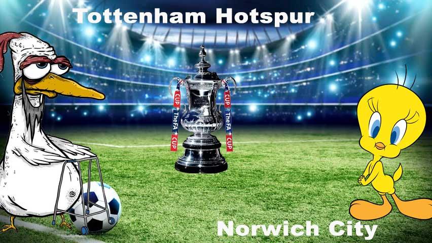 SpursNorwich.jpg